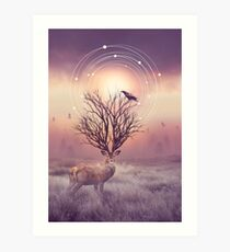 In the Stillness Art Print