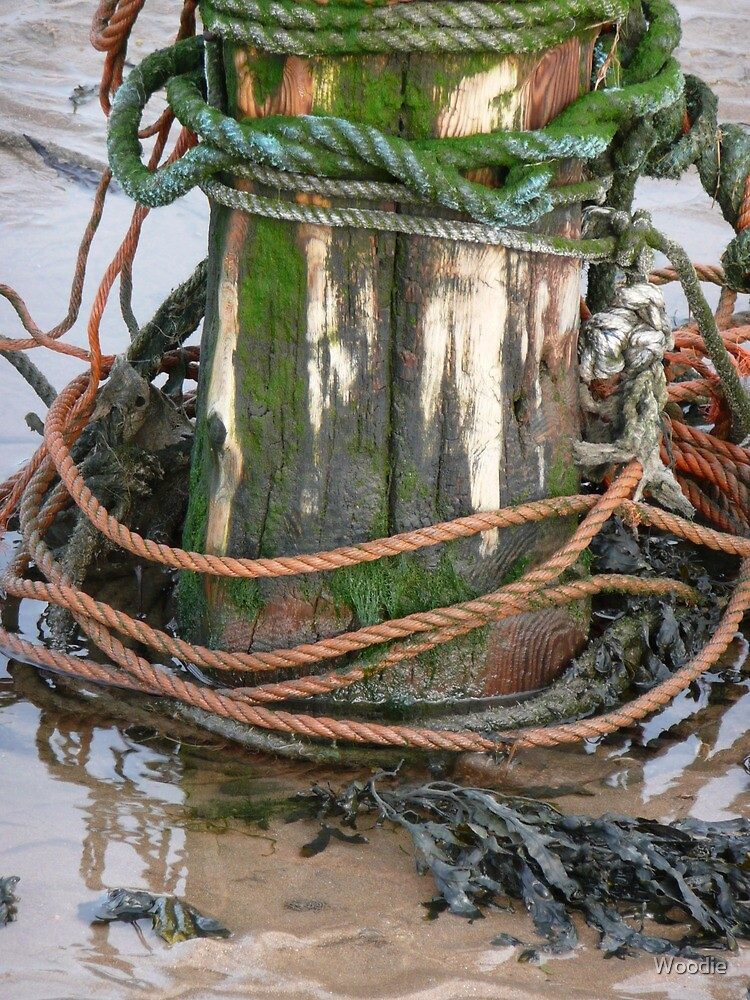 Mooring post with ropes! by Woodie