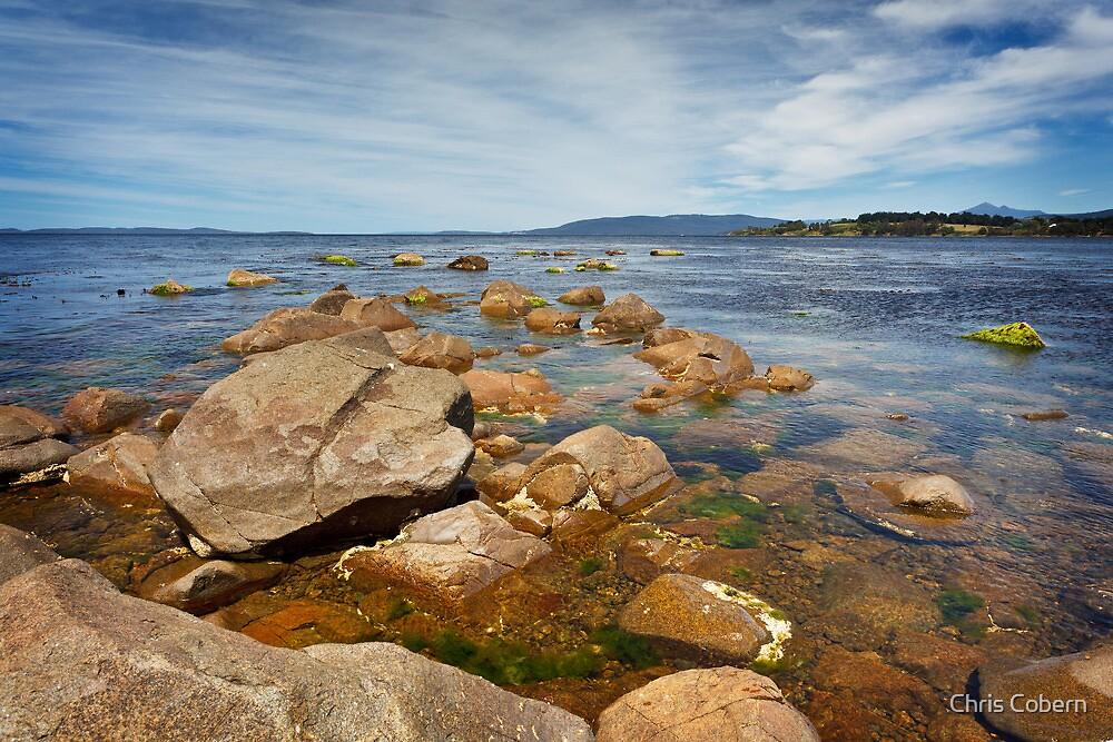 Ninepin Point, Tasmania #7 by Chris Cobern
