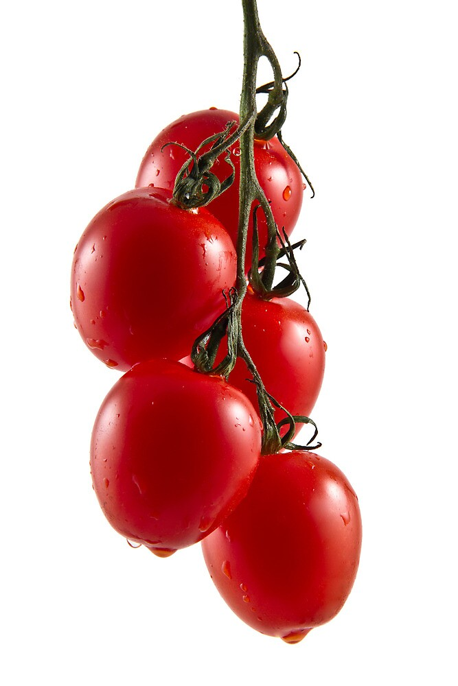 Hanging Tomato Truss by Gert Lavsen