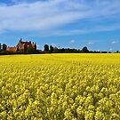 Castle by Gert Lavsen