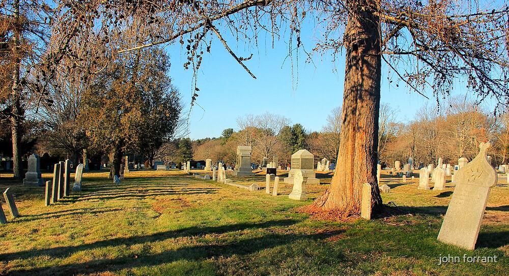 Cemetery: December 18, 2011 by john forrant