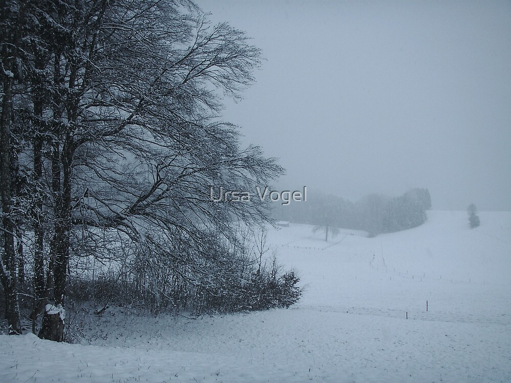 2011 - snow scape by moyo