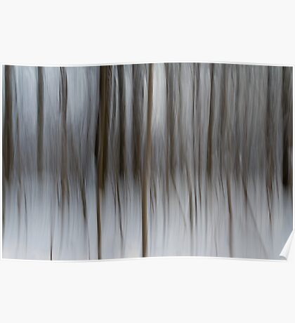 Winter Trees Abstraction Poster