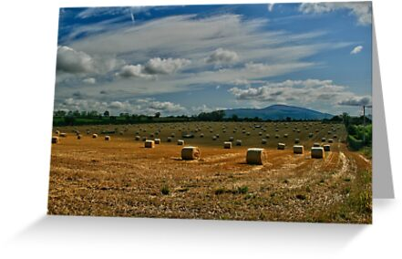 Bales of Straw with Slievenamon in the background by John  Carey