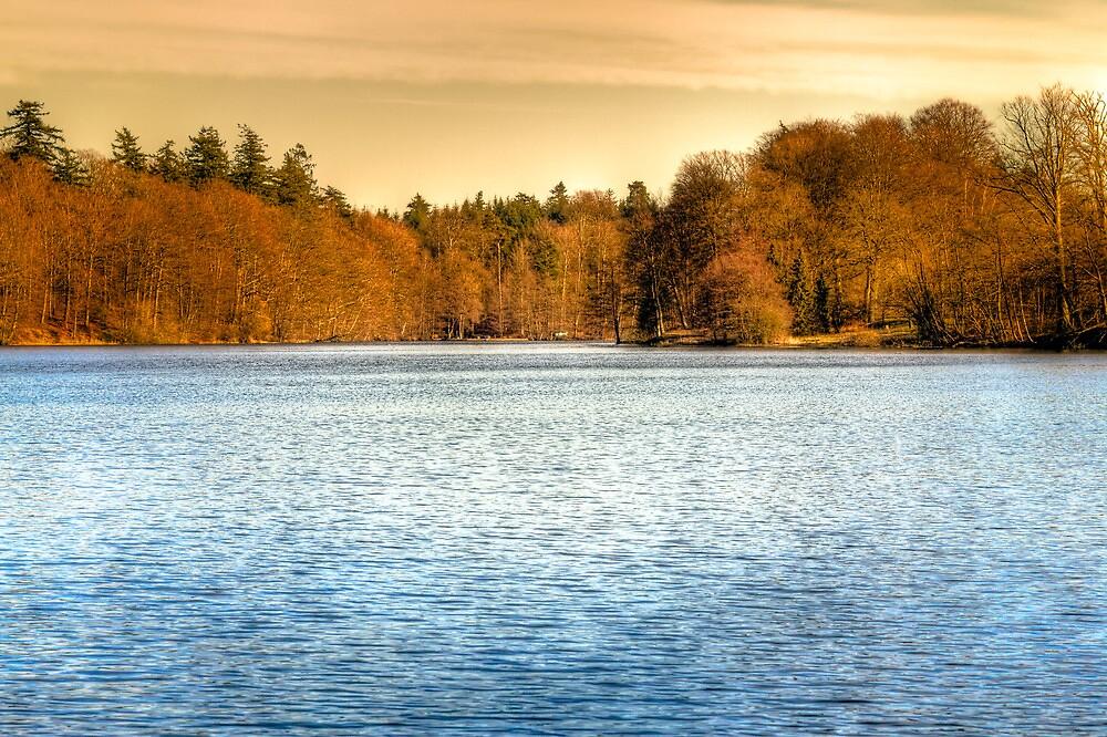 Winter Lake by Gert Lavsen