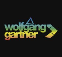 Wolfgang Gartner Multi Colored