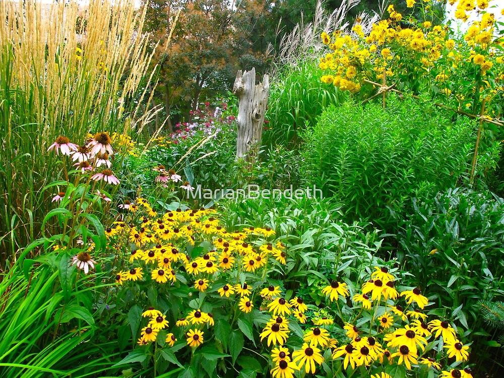 A Daisy garden by MarianBendeth