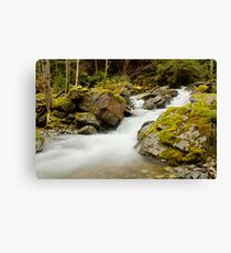 Rushing Down Hill Canvas Print