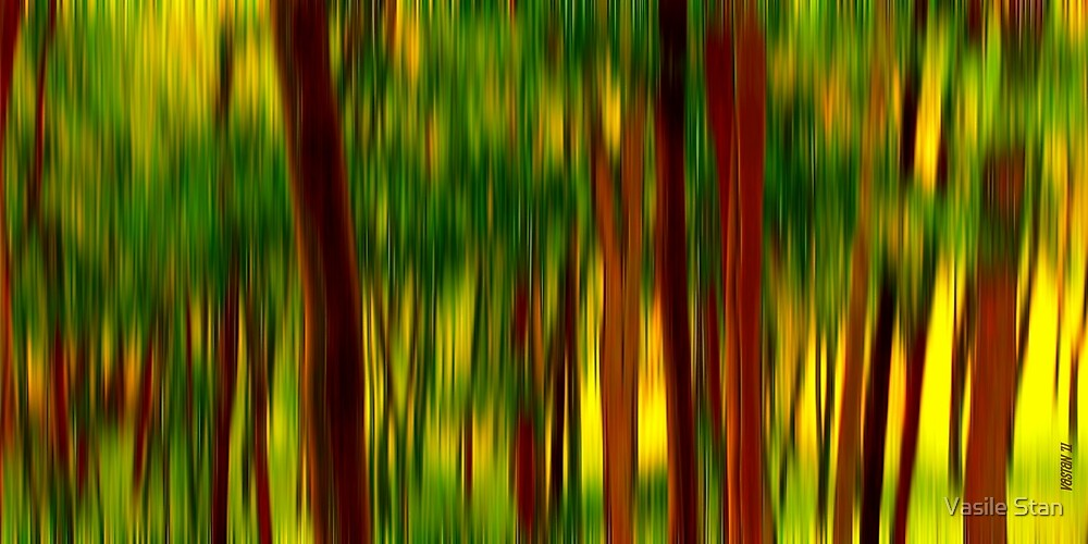 Forest by Vasile Stan