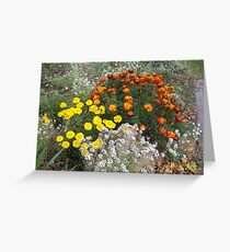 Bright colourful garden flowers Greeting Card