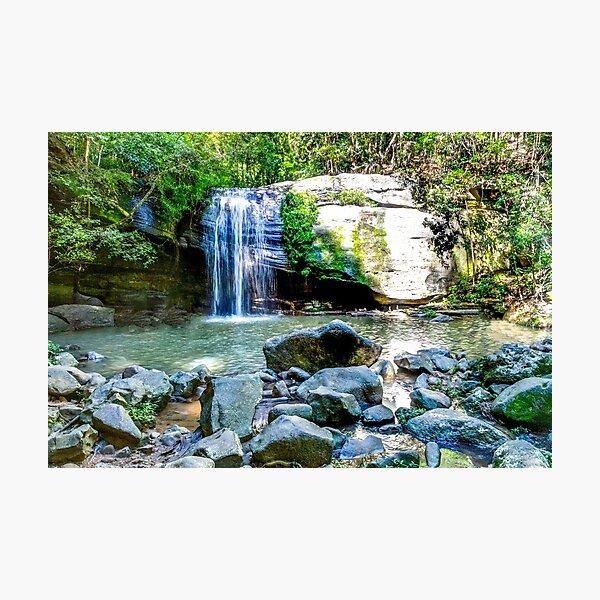 Buderim Waterfall Photographic Print