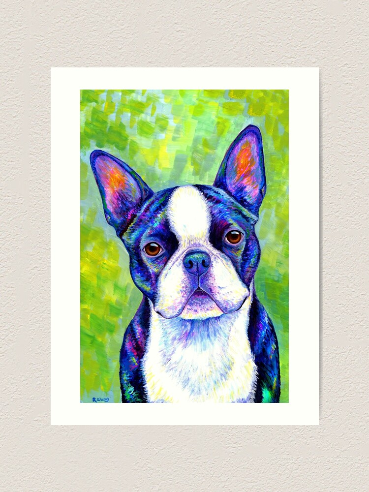 Alternate view of Effervescent - Colorful Boston Terrier Dog Art Print