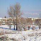 Winter Landscape Tuscany by catiapancani