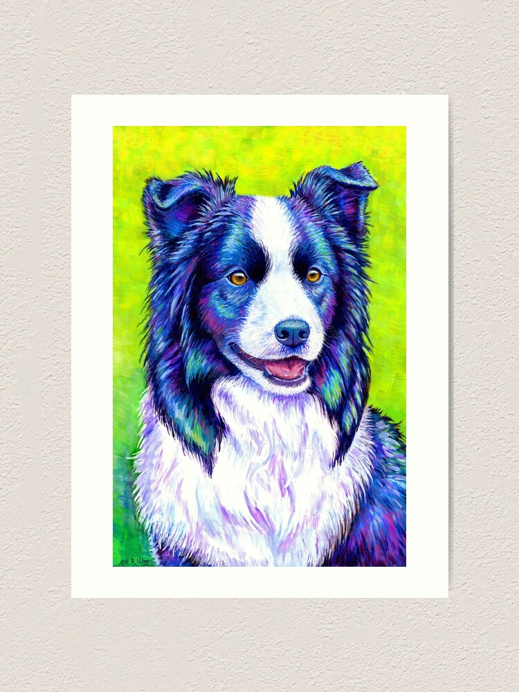 Alternate view of Watchful Eye -  Colorful Border Collie Dog Art Print