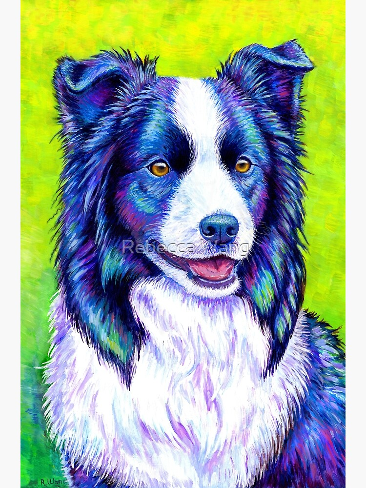 Watchful Eye -  Colorful Border Collie Dog by lioncrusher