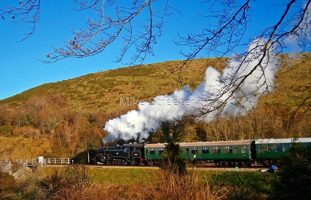 Steam on Swanage Railway by Mike Streeter