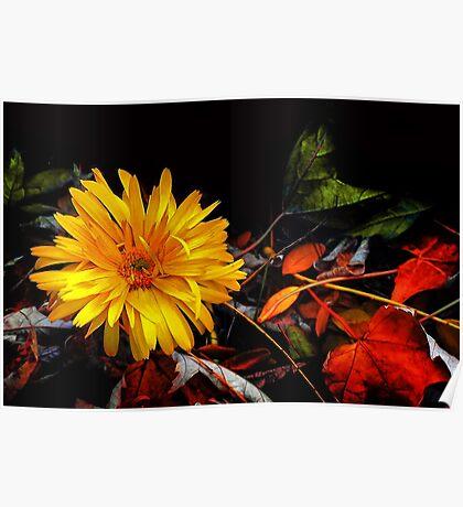 Twilight in an Autumn Garden Poster