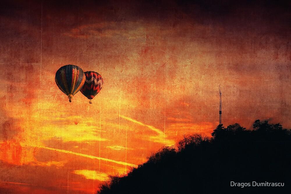 Goodbye by Dragos Dumitrascu