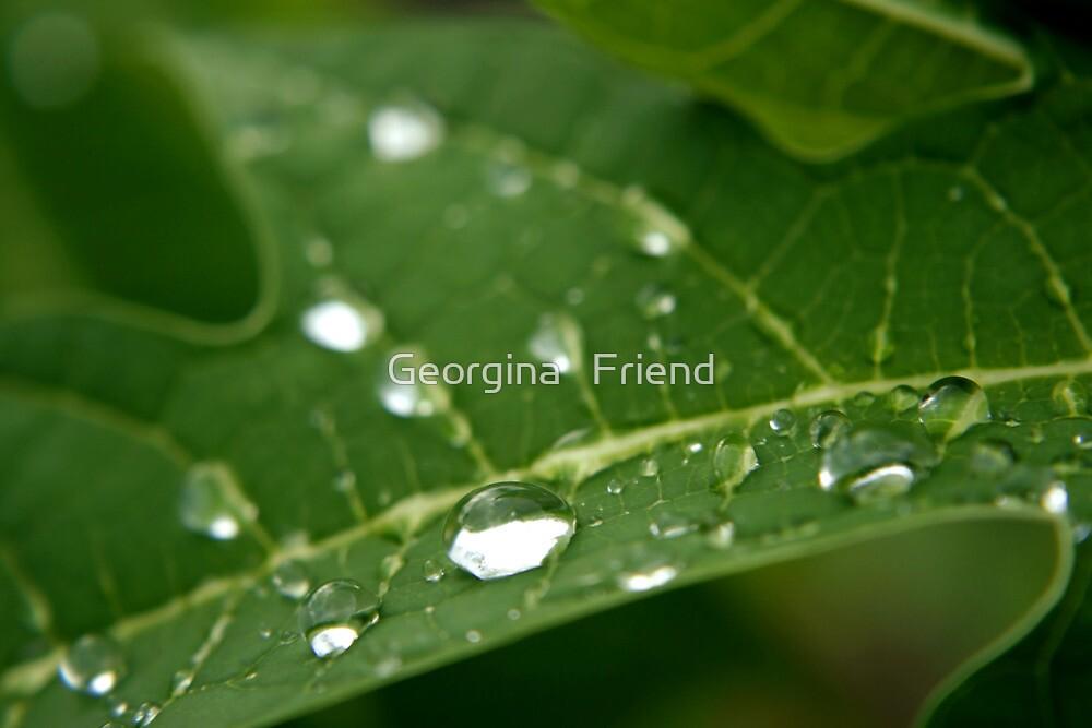 Essence of life by Georgina   Friend