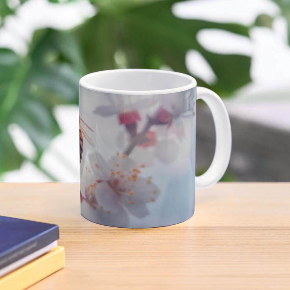 honey bee on apricot flowers Mug