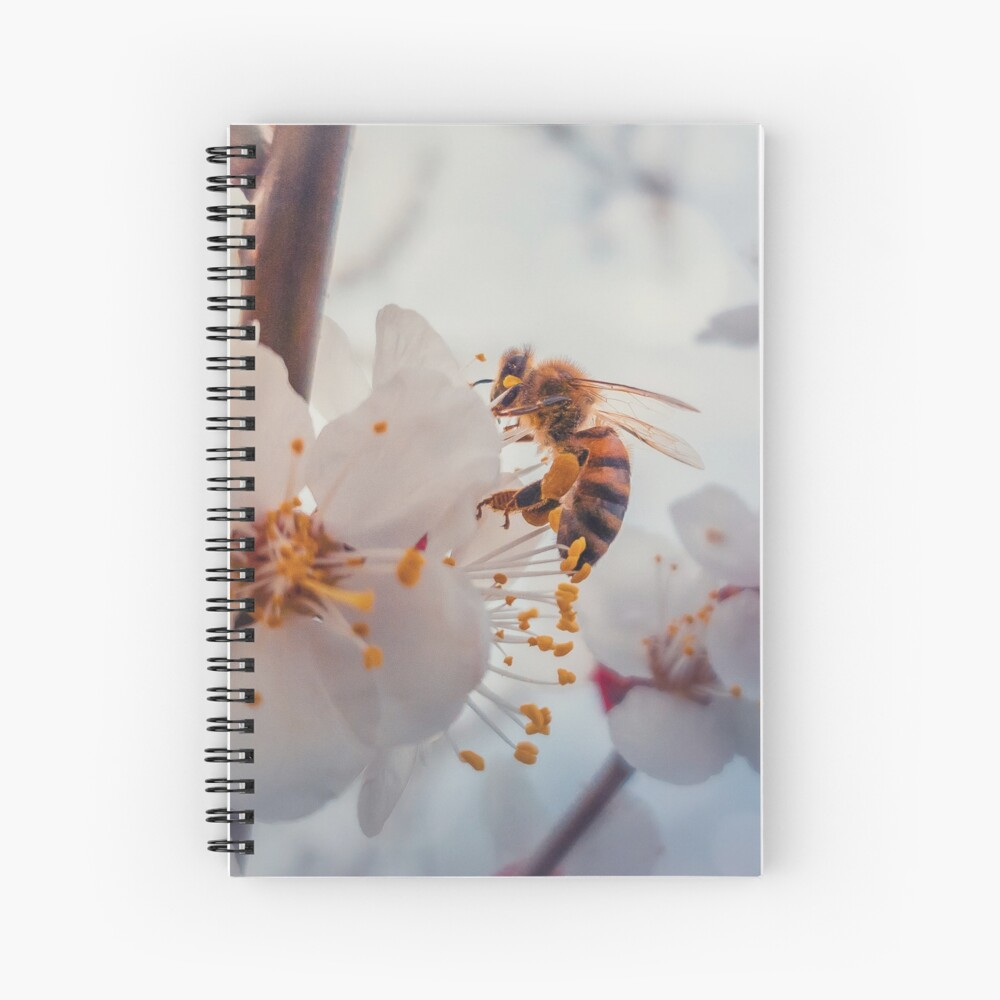 honey bee on apricot flowers Spiral Notebook