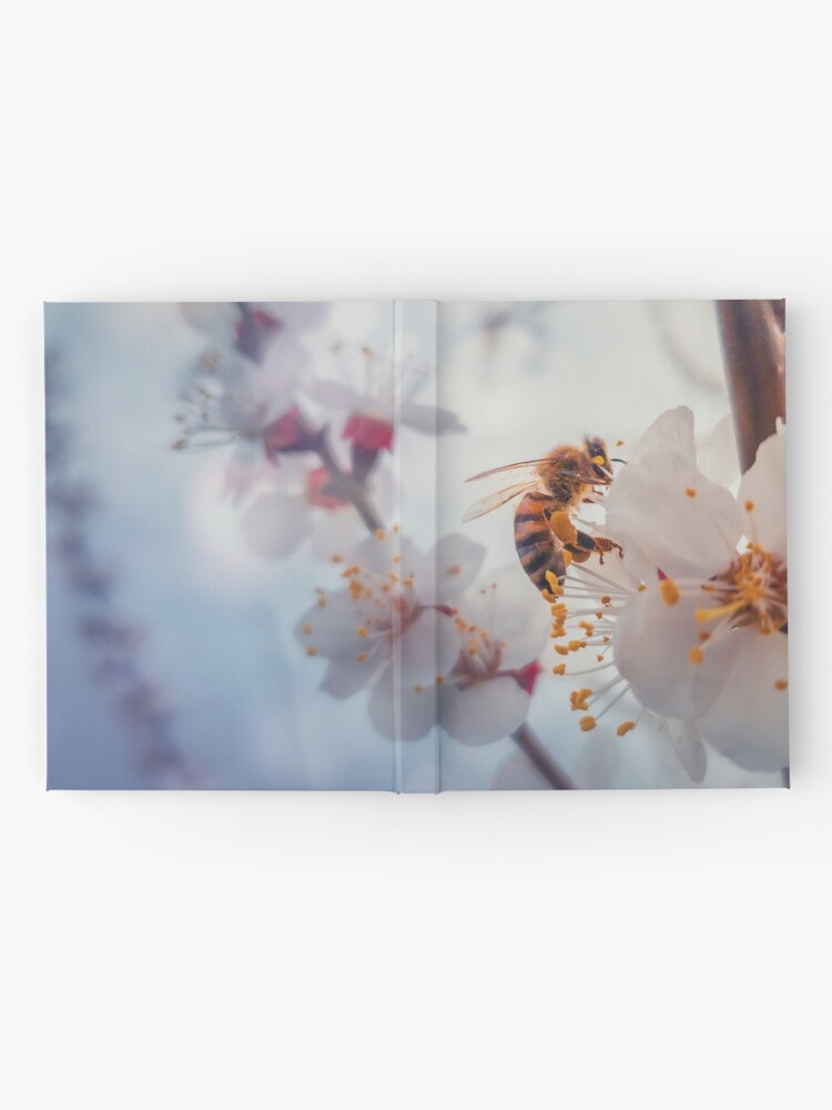 Alternate view of honey bee on apricot flowers Hardcover Journal