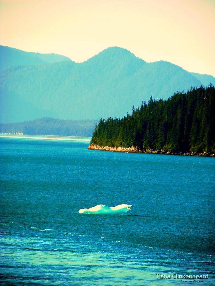 Iceberg In View by Tisha Clinkenbeard