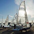 Winter Sailing ~ Lyme Regis, Dorset by Susie Peek