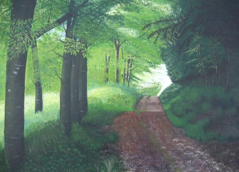 Ballingown Wood by Joe Fogarty