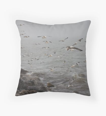 A flock of Seagulls feeding Throw Pillow