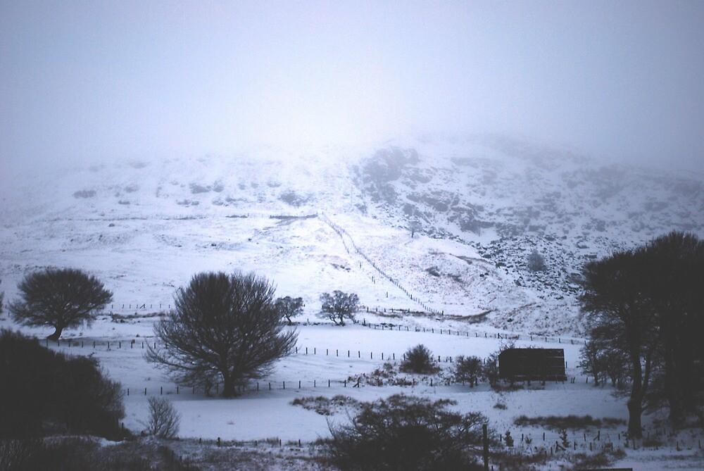 Snowy Farm by Ailia