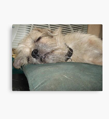 NO TEARS ON THIS PILLOW! Canvas Print