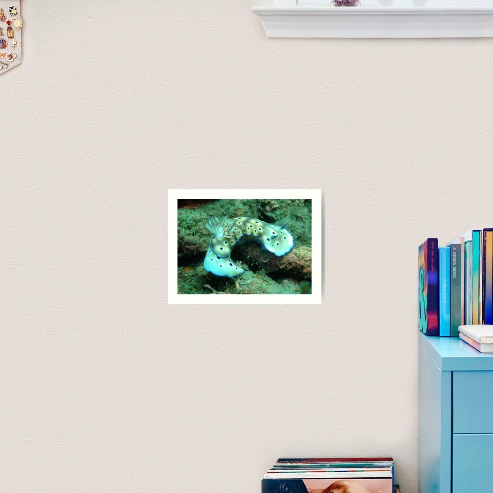 Risbecia Curve Art Print