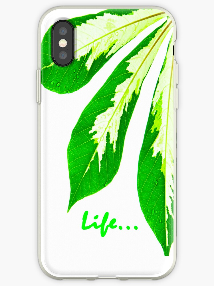 Love for nature - case by Van Nhan Ngo