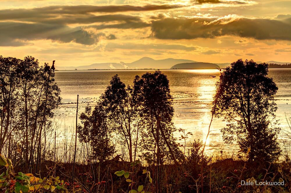 A Golden Multitude by Dale Lockwood