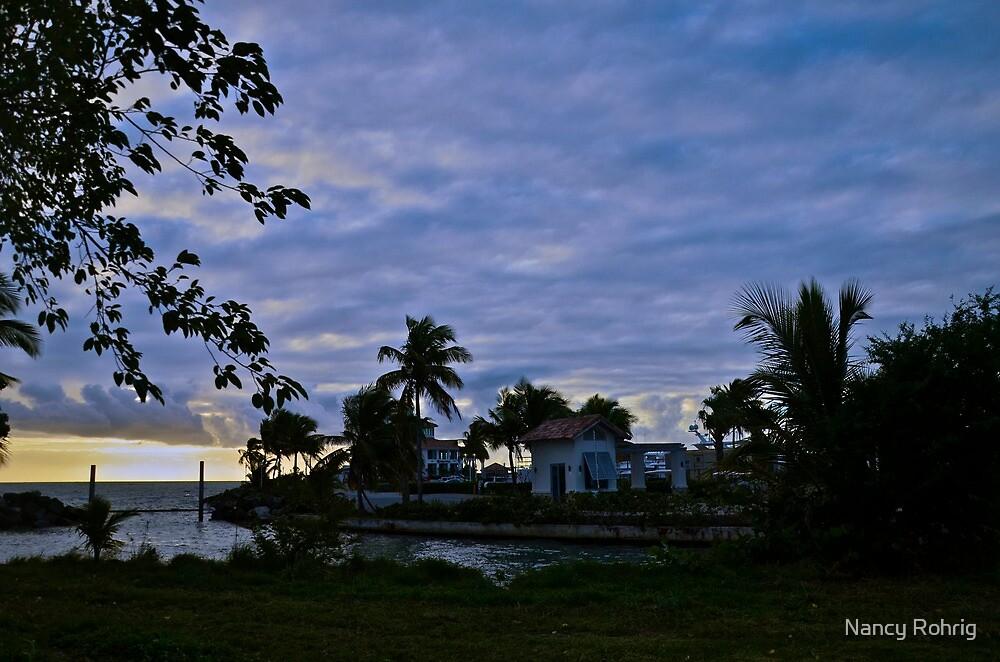 Sun up in Puerto Rico by Nancy Rohrig