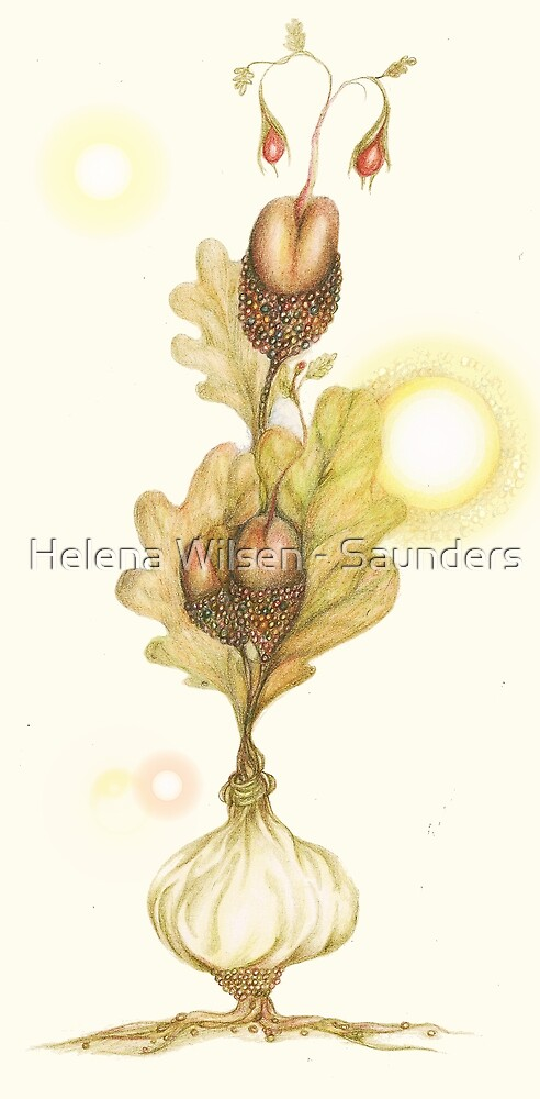 New Growth - Spring by Helena Wilsen - Saunders