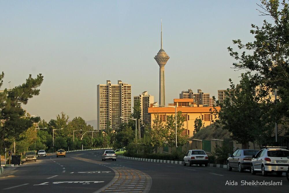 ash-243 by Aida  Sheikholeslami