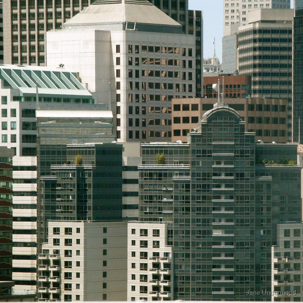 Downtown San Francisco by Jane Underwood