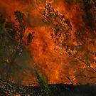 Burn, Baby by FeralChild