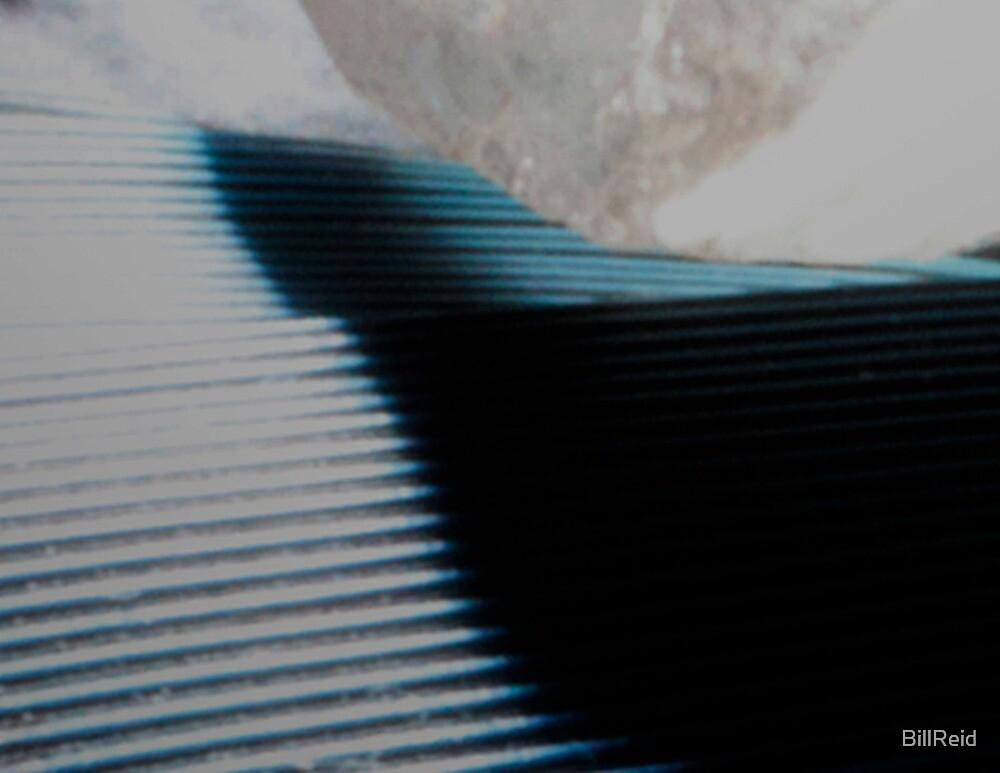 Terraces by BillReid