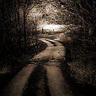 The Dark Path (sepia) by MrDeath