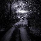 The Dark Path (b&w) by MrDeath