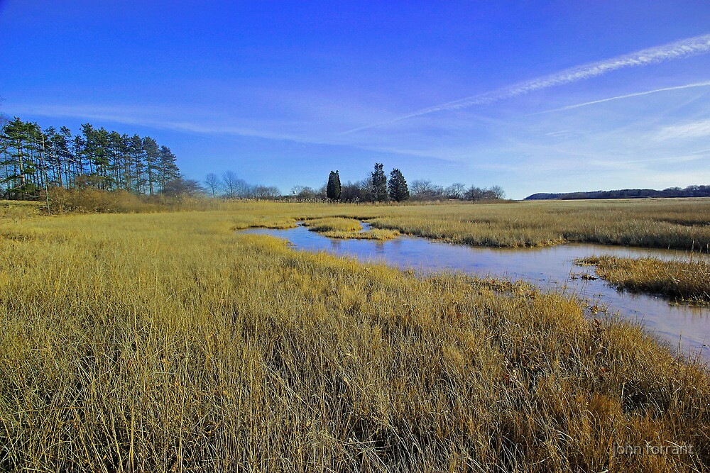 Salt marsh:  Ipswich, Mass by john forrant