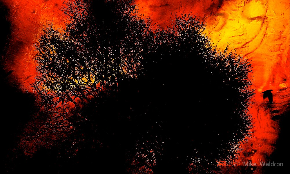 Autumnal Layers ..2 by Mike  Waldron
