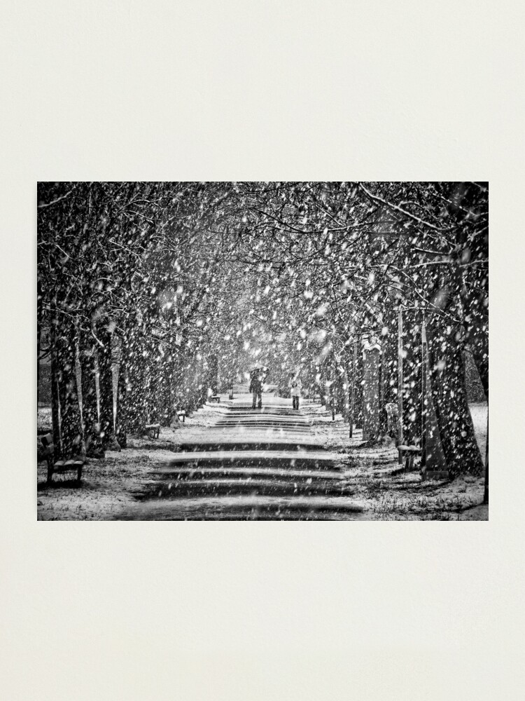 Alternate view of A walk in the snow Photographic Print