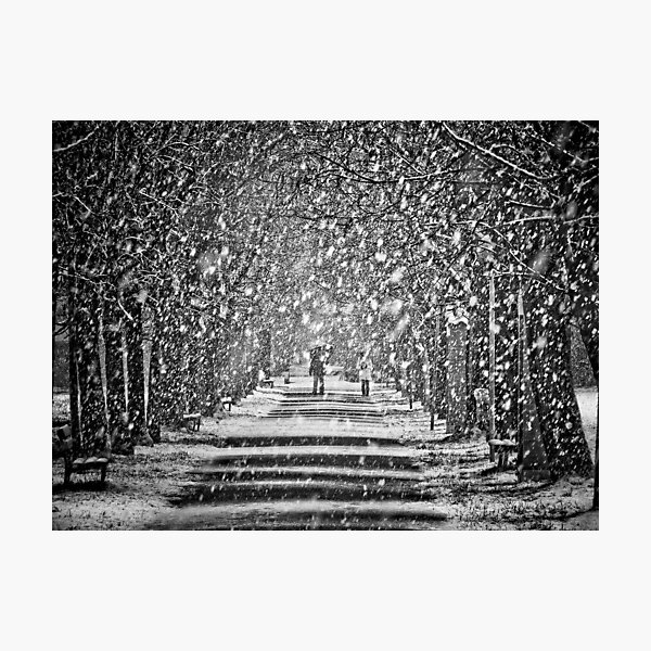 A walk in the snow Photographic Print