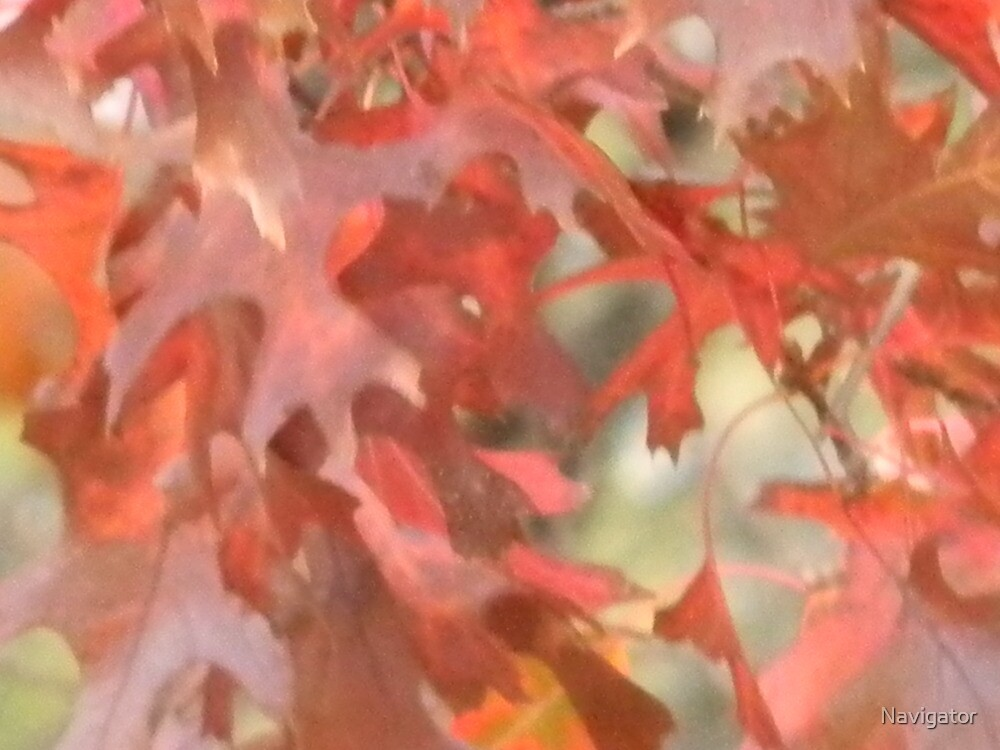 Fall - Like a Painting by Navigator