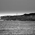 north head manly - watching... by miroslava